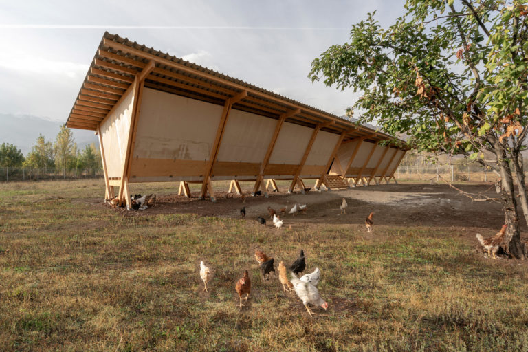 house-of-chickens-by-so-architecture-_dezeen_2364_col_3