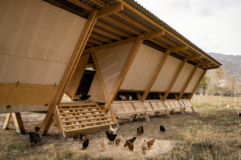 house-of-chickens-by-so-architecture-_dezeen_2364_col_4