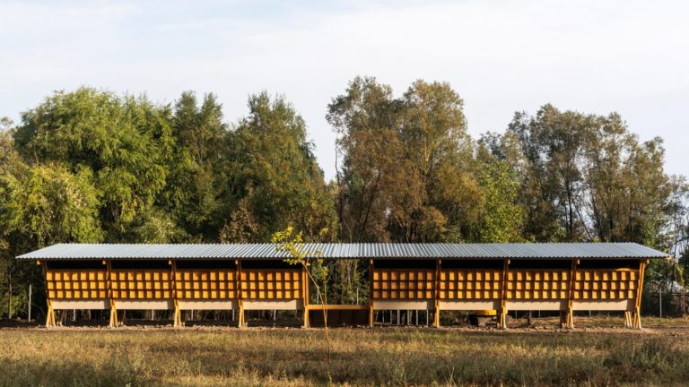 house-of-chickens-by-so-architecture-_dezeen_2364_hero_b-1704x959